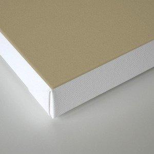 Determinism Canvas Print