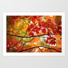 Autumn Bliss Art Print
