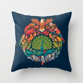 Aerial Rainbow Throw Pillow