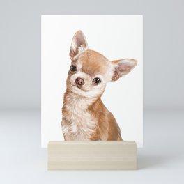 Chihuahua Mini Art Print