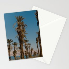 Palm trees in the Negev Desert, Israel Stationery Cards