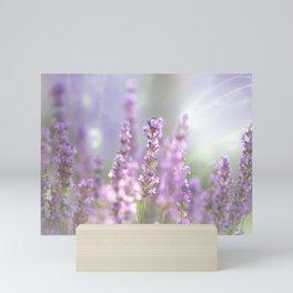 #Lavender #dreams in #summer Mini Art Print