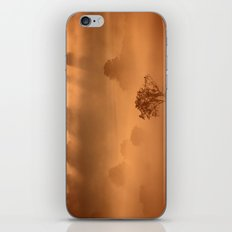 Gold in the Hedgerows iPhone & iPod Skin
