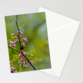 Bumble and Inch by Teresa Thompson Stationery Cards