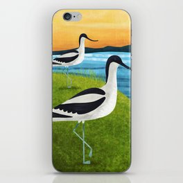 Two Avocets In Suffolk iPhone Skin