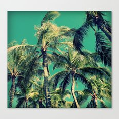 Paradise Palm Trees  Canvas Print