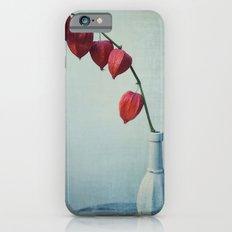 Hozuki, Autumn Botanical Still Life - Japanese Lantern Pods in Vase iPhone 6s Slim Case