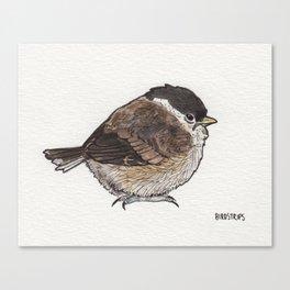 Bird no. 279: What a Day Canvas Print