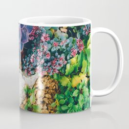 Garden with Succulent (Color) Coffee Mug