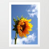 sunflower Art Prints featuring sunflower by Hannah