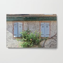 Windows and Pink Roses Metal Print