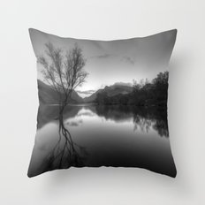 Tree Lake Throw Pillow