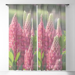 Pink flower towers (small-flowered lupin) Sheer Curtain