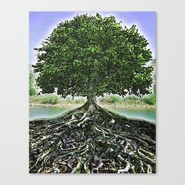 Really Rooted Canvas Print