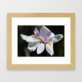 """Iris, Goddess of the Rainbow (i)"" by ICA PAVON Framed Art Print"