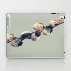 Fluffy gray Laptop & iPad Skin