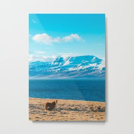 Blue Shine With A Horse Metal Print