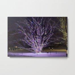 Longwood Gardens Christmas Series 41 Metal Print