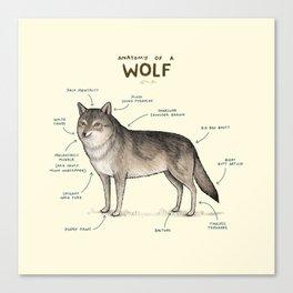 Anatomy of a Wolf Canvas Print