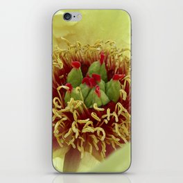 peony bloom macro XXIV iPhone Skin