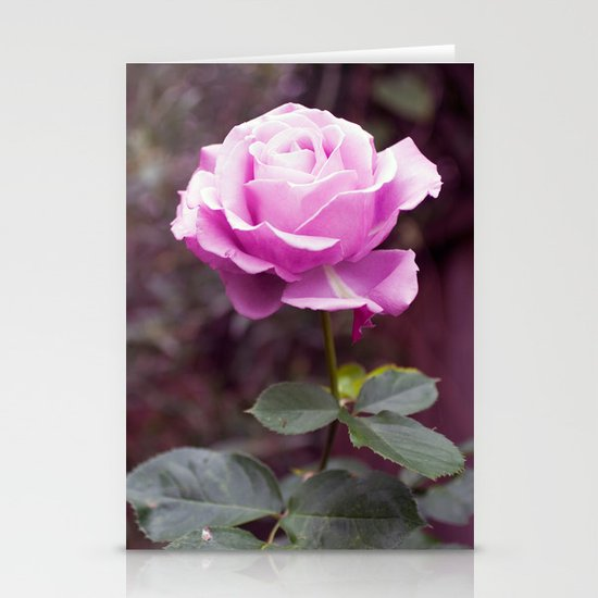 Hello Gorgeous Rose Stationery Cards
