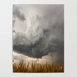 Marshmallow - Storm Cloud Over Golden Wheat in Kansas Poster