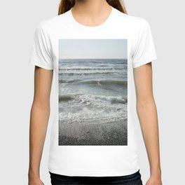 Sand Dollar Beach T-shirt