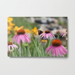 Butterfly and the Bee Metal Print