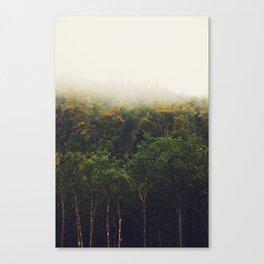 North of Wawa 03 Canvas Print