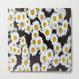 Daisy Flower Design Metal Print