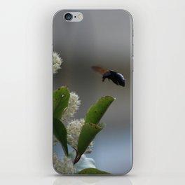 Carpenter Bee Landing iPhone Skin