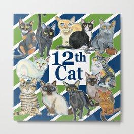 12th Cat Metal Print
