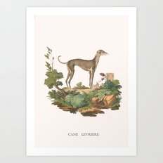 Running with the hounds. Art Print