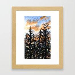 Briars Pines Dusk Sept 12 Framed Art Print