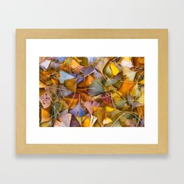 Fallen Ginkgo Leaves Framed Art Print