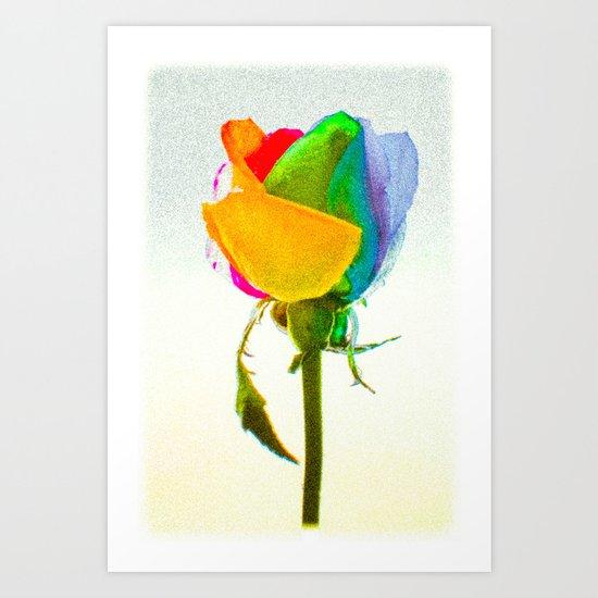 """Rainbow Rose 3"" Art Print"