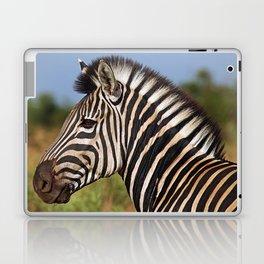 Zebra - Africa wildlife Laptop & iPad Skin