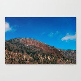 Alps Canvas Print