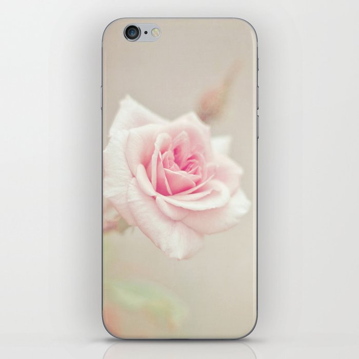 Little Pink Rose iPhone Skin