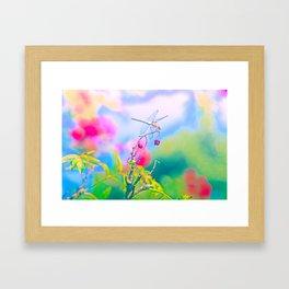 Dragonfly Dream a while Framed Art Print
