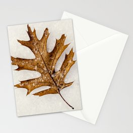 a leaf in the snow Stationery Cards