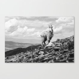 KING OF THE MOUNTAIN Canvas Print