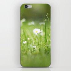 Flora calling iPhone & iPod Skin