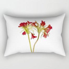 Parrot Lily Cartoon Rectangular Pillow