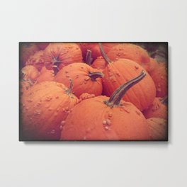 Pumpkins with Warts Metal Print