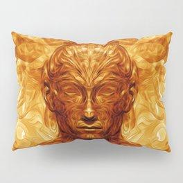 Shamannic Illumination Pillow Sham