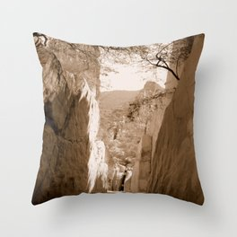 Stone walls in sepia Throw Pillow