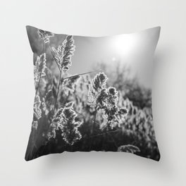 Sunkissed by the River Throw Pillow