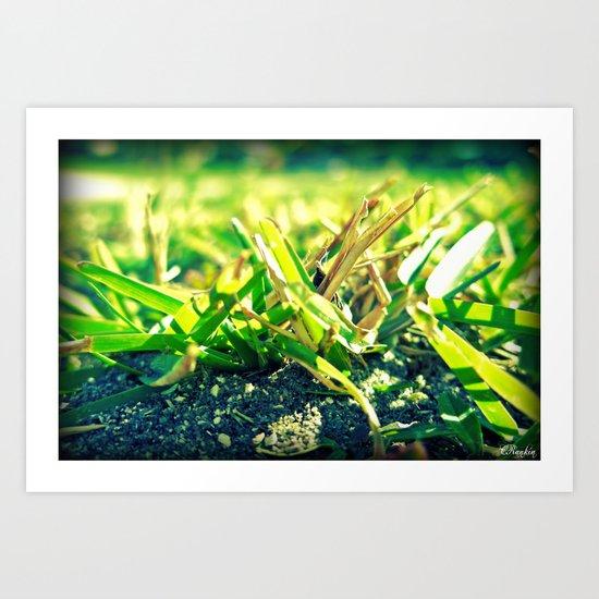 Moody Grass Art Print