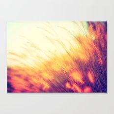 Wheat Grass - Prairie Wheat Grass waving in the wind Canvas Print